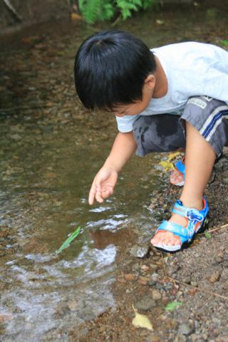 川遊びの恒太