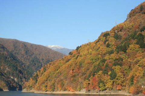 梓湖の黄葉
