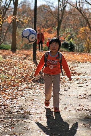 落ち葉とサッカーボールと恒太