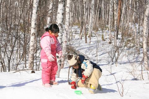 白樺林の雪遊び
