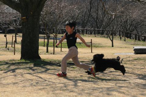 犬に追いかけられる恒太