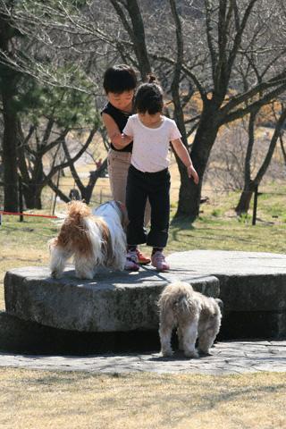 犬を怖がる二人