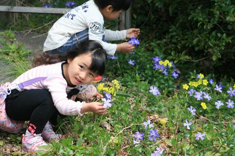 花摘みの二人