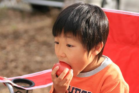 トマトを食べる恒太