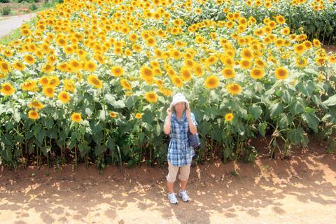 真紀さんとひまわり畑