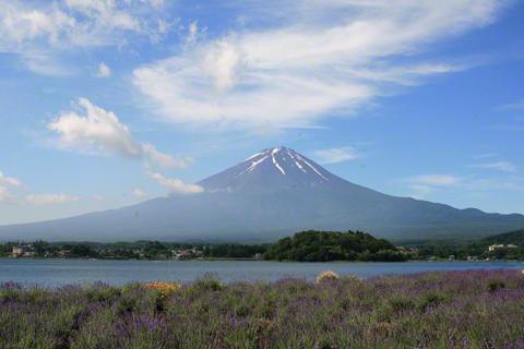 富士山と雲とラベンダー