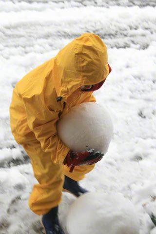 雪玉を運ぶ恒太