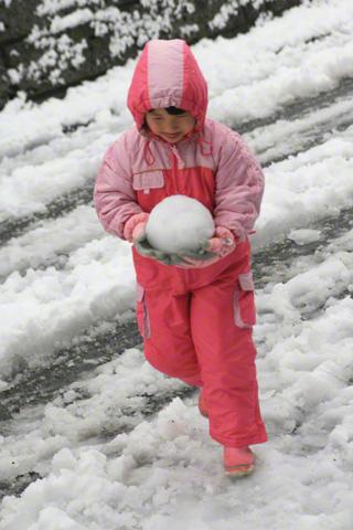 雪玉を運ぶ瑞雪