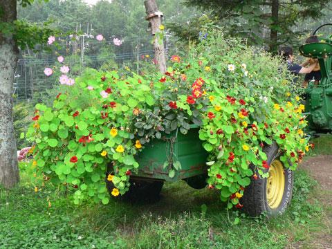 hana-tractor.jpg