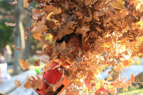 落ち葉を放り投げる恒太