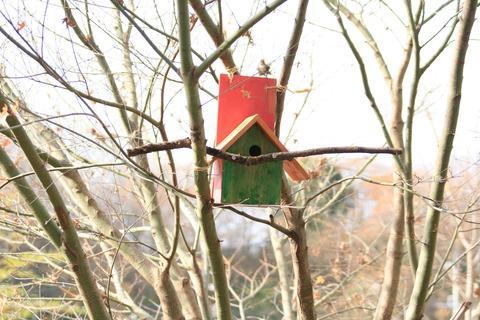 カラフルな巣箱
